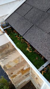 Gutter Cleaning Woodstock IL, Gutter Cleaning Crystal lake IL, Gutter Cleaning Huntley IL, Gutter Cleaning McHenry IL, Gutter Cleaning Johnsburg IL, Gutter Cleaning Cary IL, Gutter Cleaning Fox River Grove IL, Gutter Cleaning Lake in the Hills IL, Gutter Cleaning Algonquin IL, Gutter Cleaning Marengo IL, Gutter Cleaning Harvard IL, Gutter Cleaning Lakewood IL, Gutter Cleaning Lakemoor IL, Gutter Cleaning Carpentersville IL, Gutter Cleaning Gilberts IL, Gutter Cleaning Lake Geneva WI, Gutter Cleaning Volo IL, Gutter Cleaning Fox Lake IL, Gutter Cleaning Richmond IL, Gutter Cleaning Zenda WI