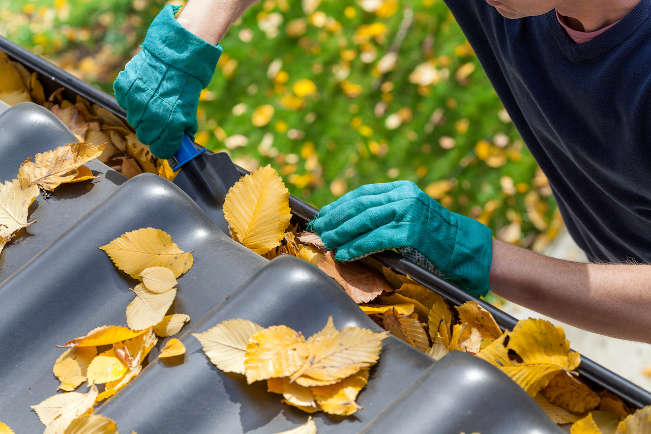 gutter cleaning cary il