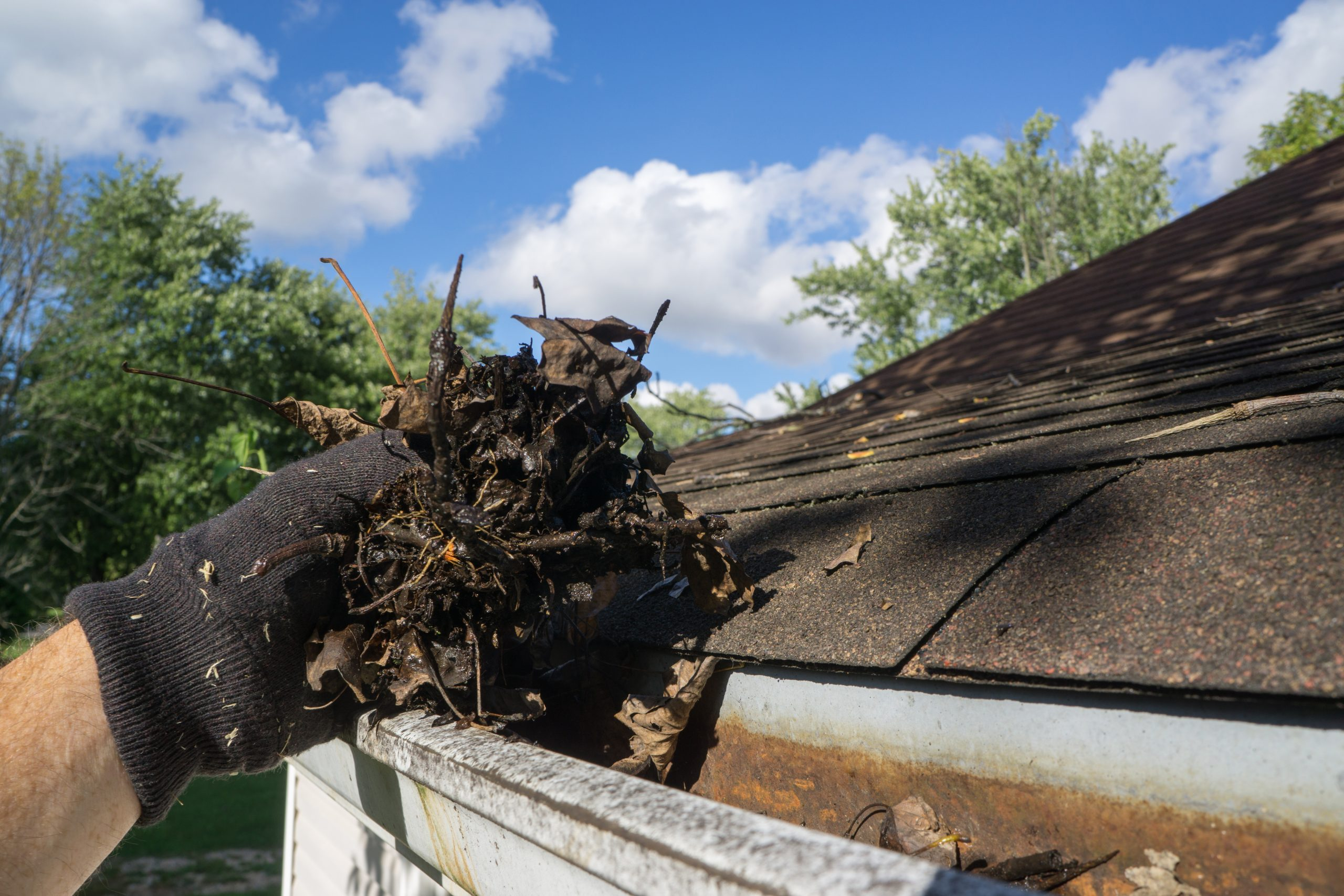 gutter cleaning huntley il